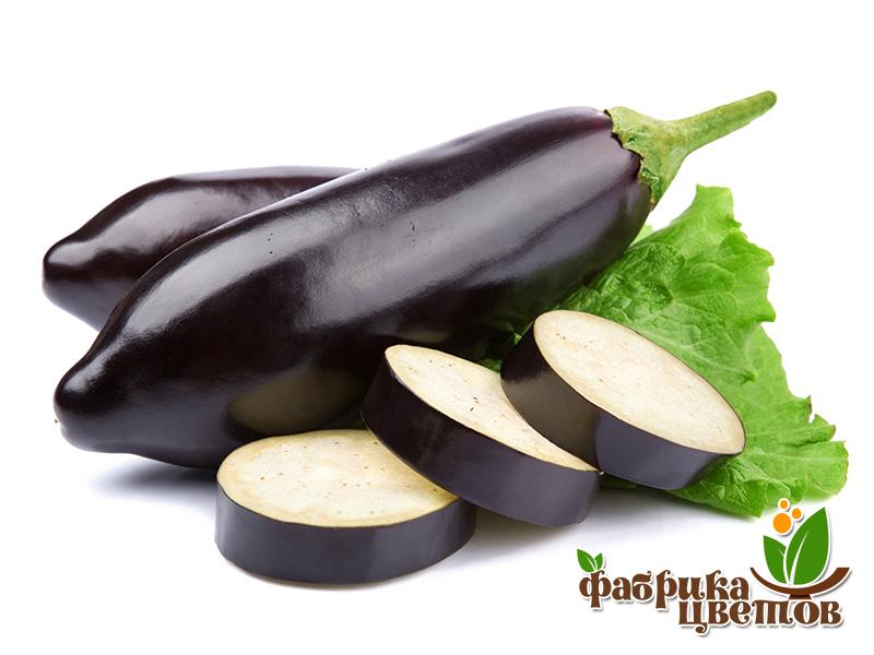 eggplant-0