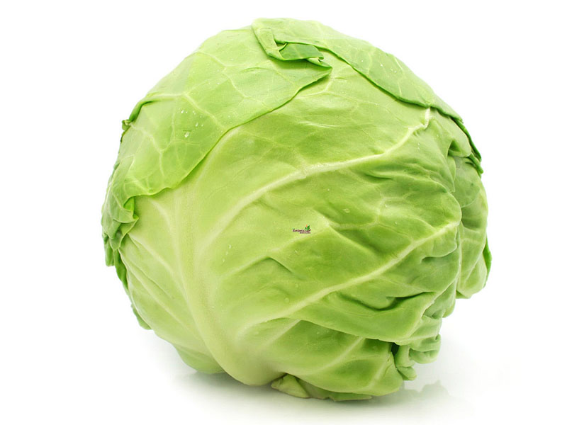 cabbage-6