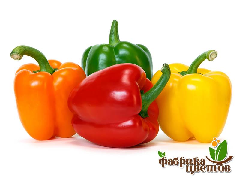 pepper-0