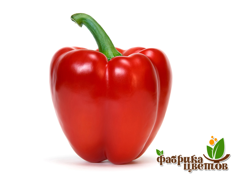 pepper-2