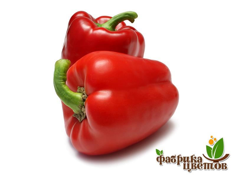 pepper-6