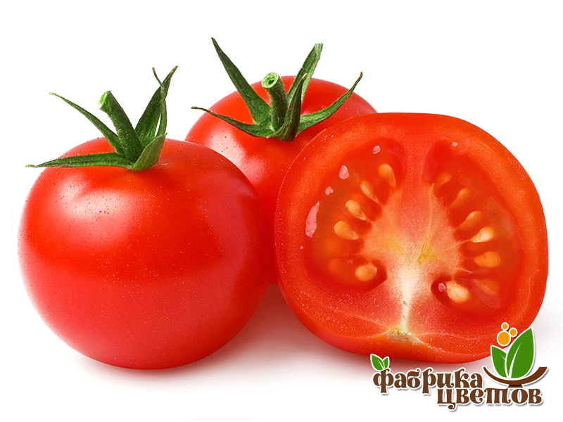 tomatoes-13